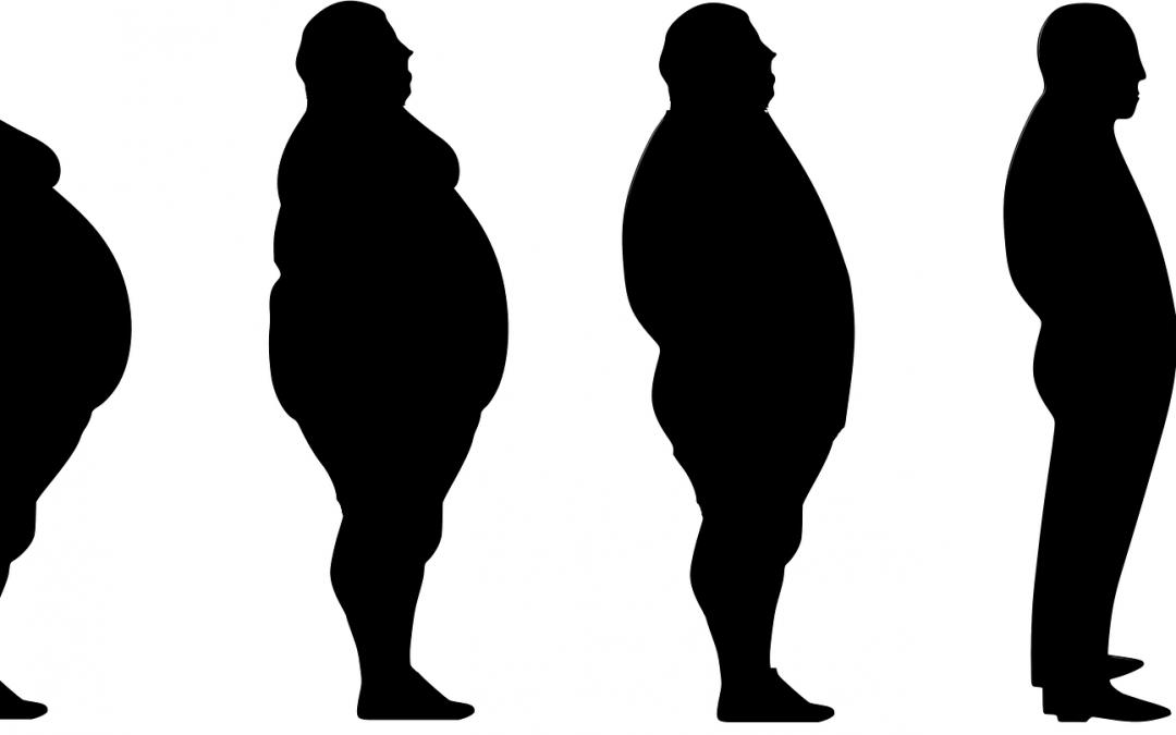 Metabolismo lento